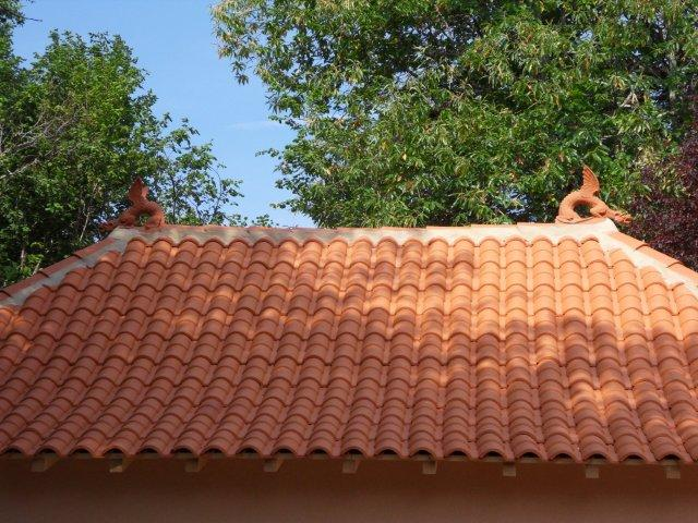 roof dragons on the roof