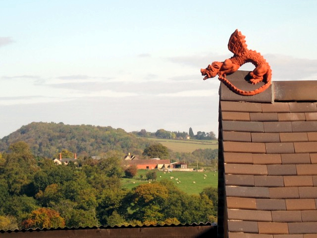 two tone dragon installed on roof in shropshire